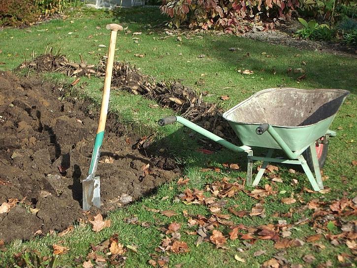 Rytí pozemku je součástí péče o záhony před zimou (Zdroj: Jan Kopřiva)