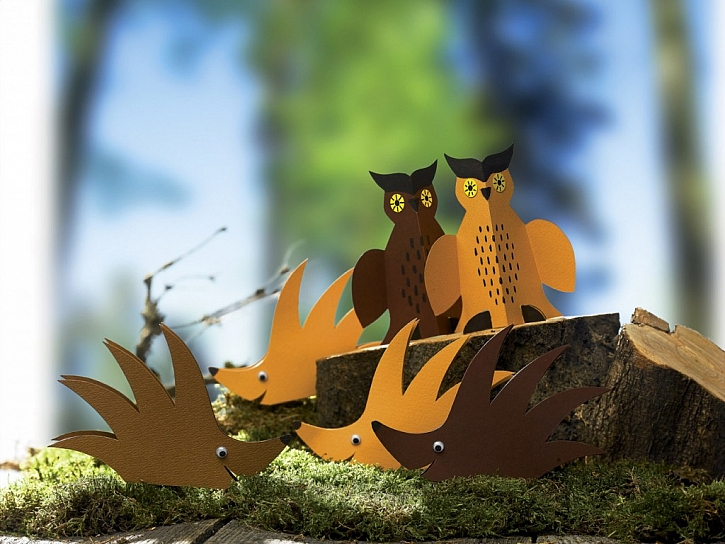Ježci a výři v lese