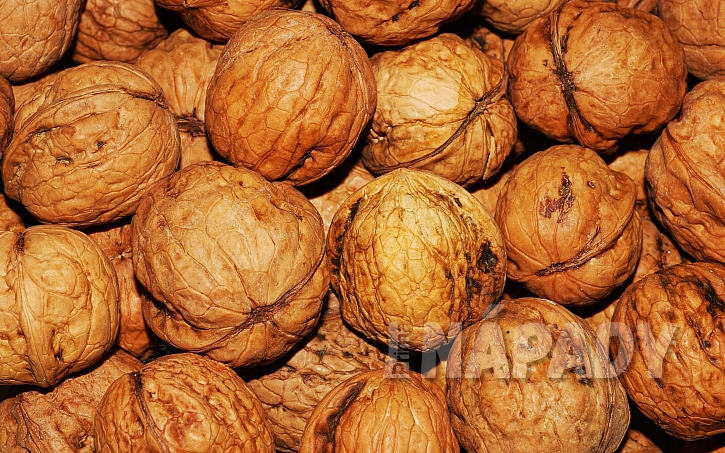 Jak správně skladovat vlašské ořechy: nejdéle vydrží ve skořápce - skořápka totiž pomáhá regulovat vlhkost a teplotu; zároveň nepropouští vzduch, a tak jádro nezačne žluknout
