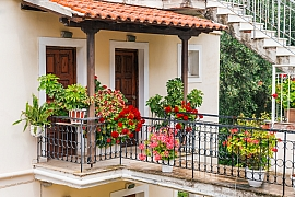 Pusťte se do pěstování těchto 10 rostlin, kterým se bude dařit i na balkoně