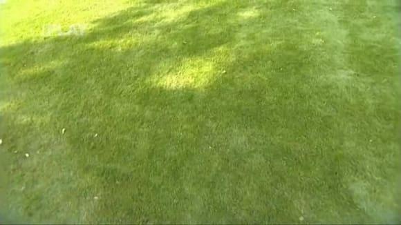 Podzimní hnojení trávníku