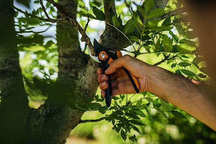 Vyberte si dvoučepelové nůžky pro čisté střihy živých větví nebo stonků nebo jednočepelové nůžky pro stříhání suchých částí rostlin (Zdroj: Fiskars)