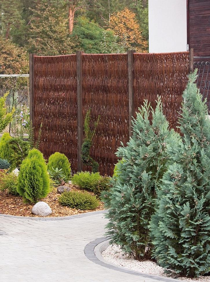 okrasný vrbový plot