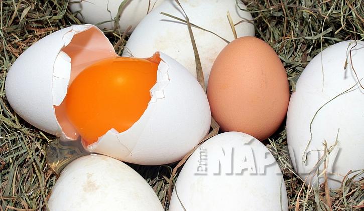Barva vaječného žloutku však nemá vliv na kvalitu