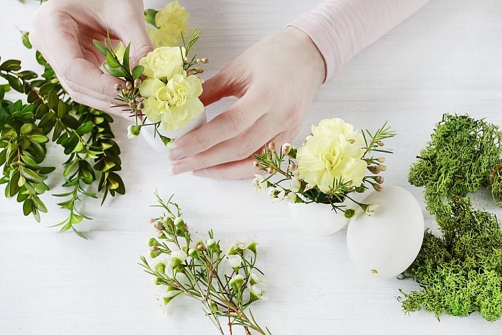 Osázení skořápek květinami