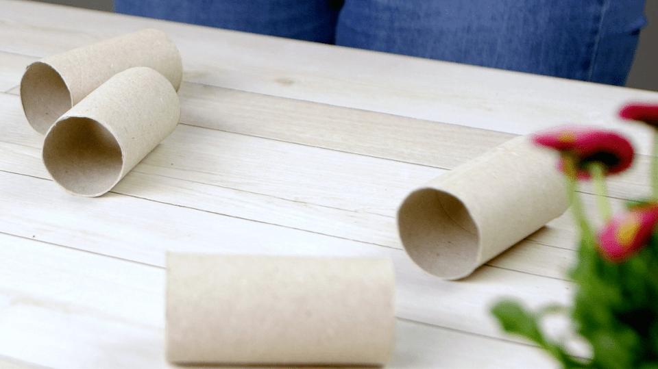 Jak vysadit semínka do květináčků z ruliček od toaletního papíru