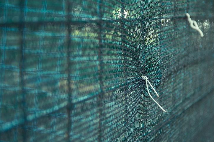 Zástěna plotu