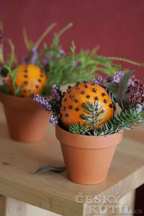 Vůně citrusů a koření aneb Dekorace z citrusů