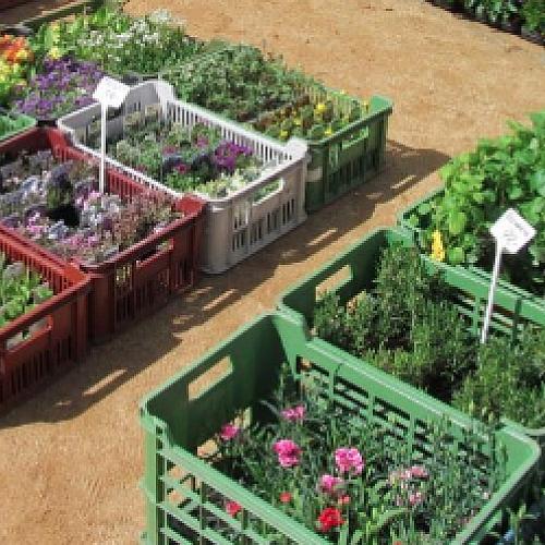 Farmářské trhy Mariánské lázně