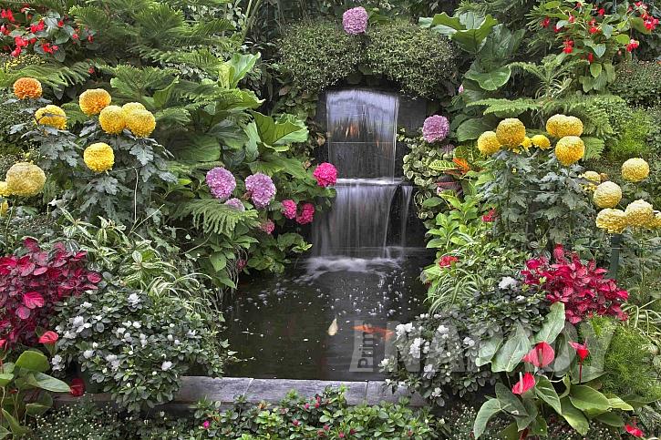 Voda doplnění květinami