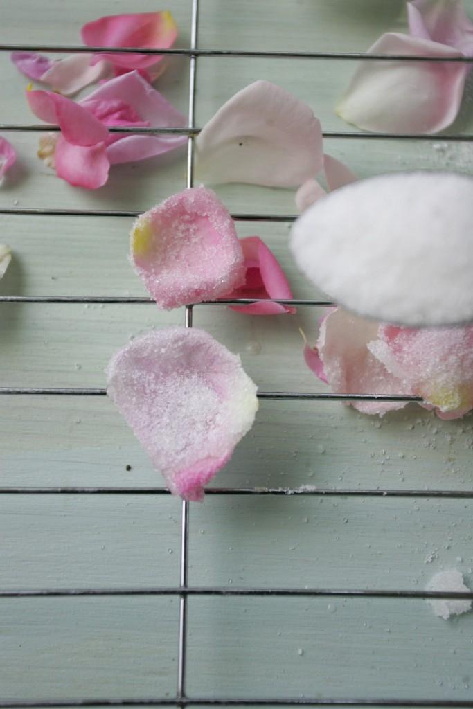 Jedlé květy k nakousnutí