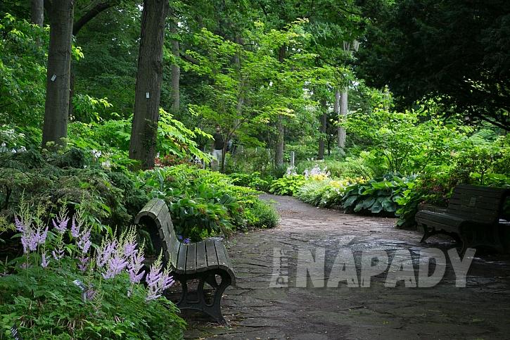 Stinné zahrady mají své osobité kouzlo (Zdroj: Daniela Dušková)