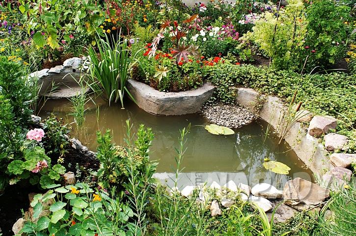 Malé zahradní jezírko