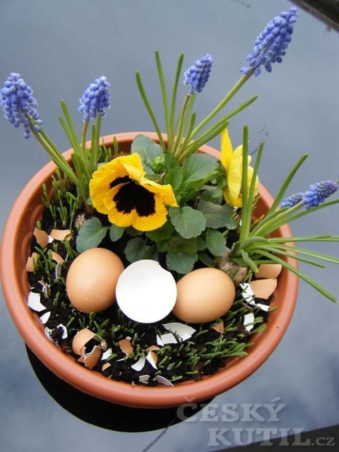 Velikonoční osení a dekorační květináč