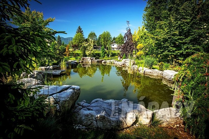 Zahradní jezírko může být vaší oázou, kde můžete odpočívat. (Zdroj: Depositphotos.com)