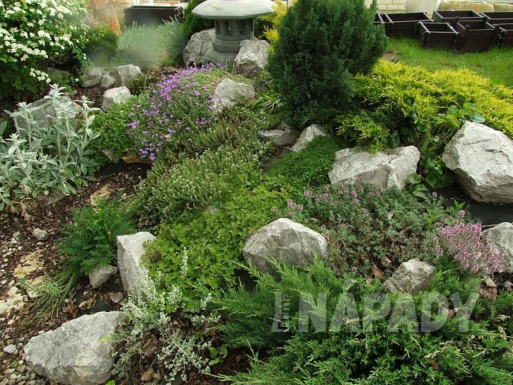 Výběr vhodného místa a optimální péče jsou nejlepší ochranou bylinkového záhonu (Zdroj: Ludmila Dušková)
