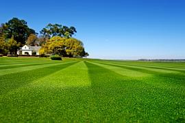 Existují 4 mýty v péči o trávník, znáte je?