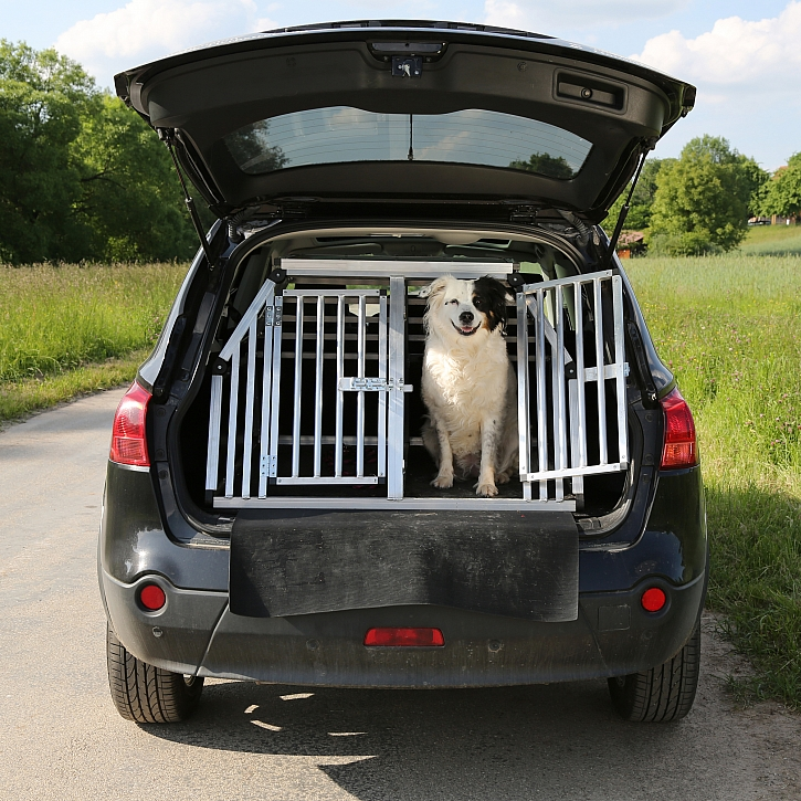 Pes v přepravní kleci