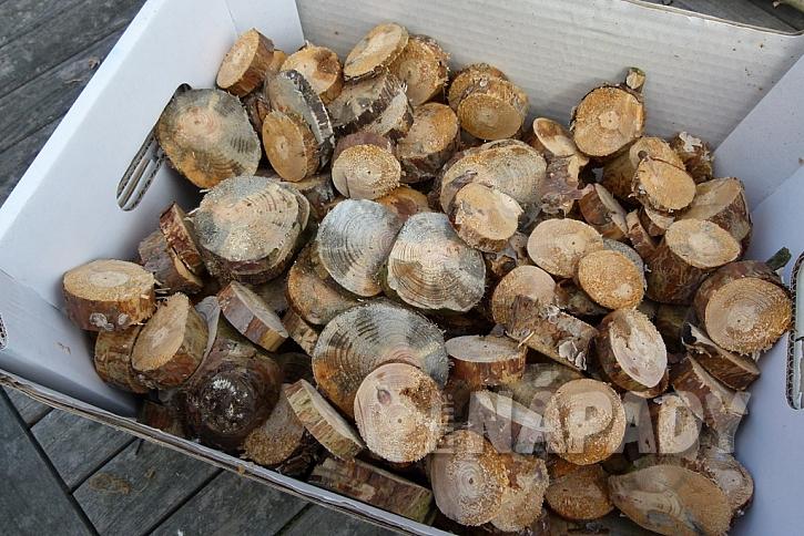 Knoflíkový věnec pro štěstí, s vůní borového dřeva 2