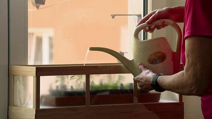 Výroba minifóliovníku z podpalových dřívek