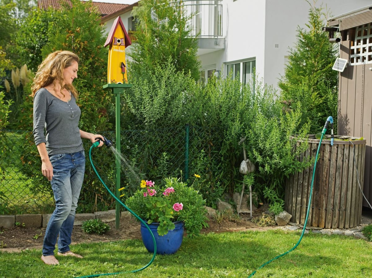 Využívejte dešťovou vodu – je zdarma a květiny ji miluji