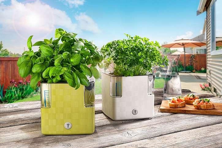 V samozavlažovacím truhlíku bylinky nezaschnou (Zdroj: Plastkon)