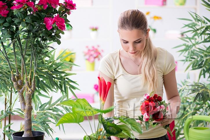 Péče o květiny zahrnuje i častou kontrolu možného zamoření škůdci. Pokud objevíme svilušky, je potřeba zvolit vhodný postřik (Zdroj: depositphotos.com)