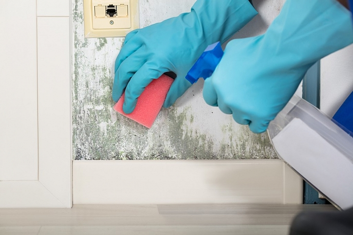 Při odstraňování plísně vždy používejte ochranné pomůcky a používejte přírodní protiplísňové přípravky