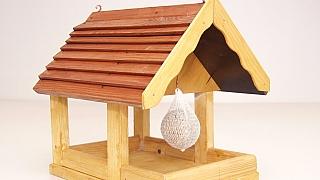 Jak udělat krmítko pro ptáky? Díky našemu návodu to zvládnete hravě