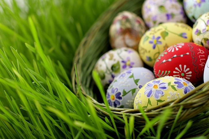 Vejce v koši v trávě