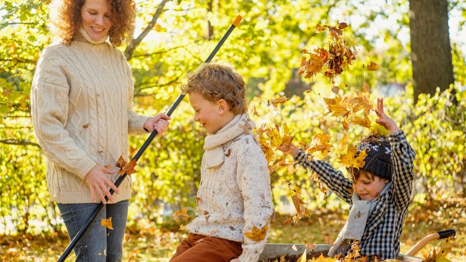 Jak dobře připravit trávník na zimu: Hrabání listí je obvyklou listopadovou kratochvílí