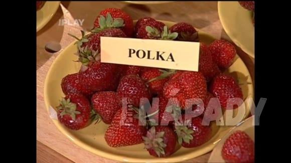 Odrůdy jahod a ledových salátů