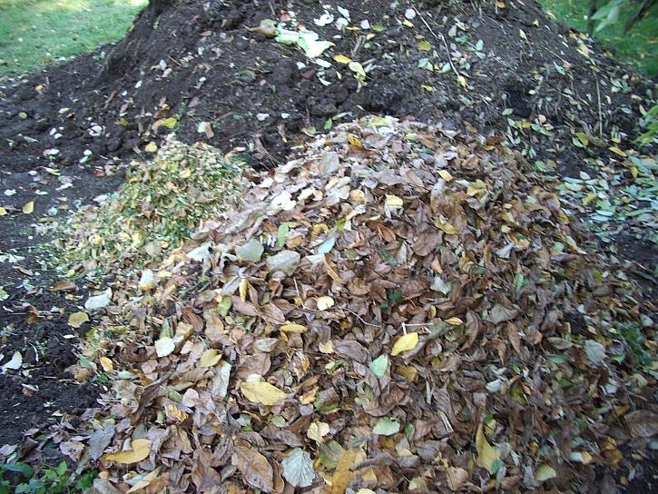 Listí na kompostu
