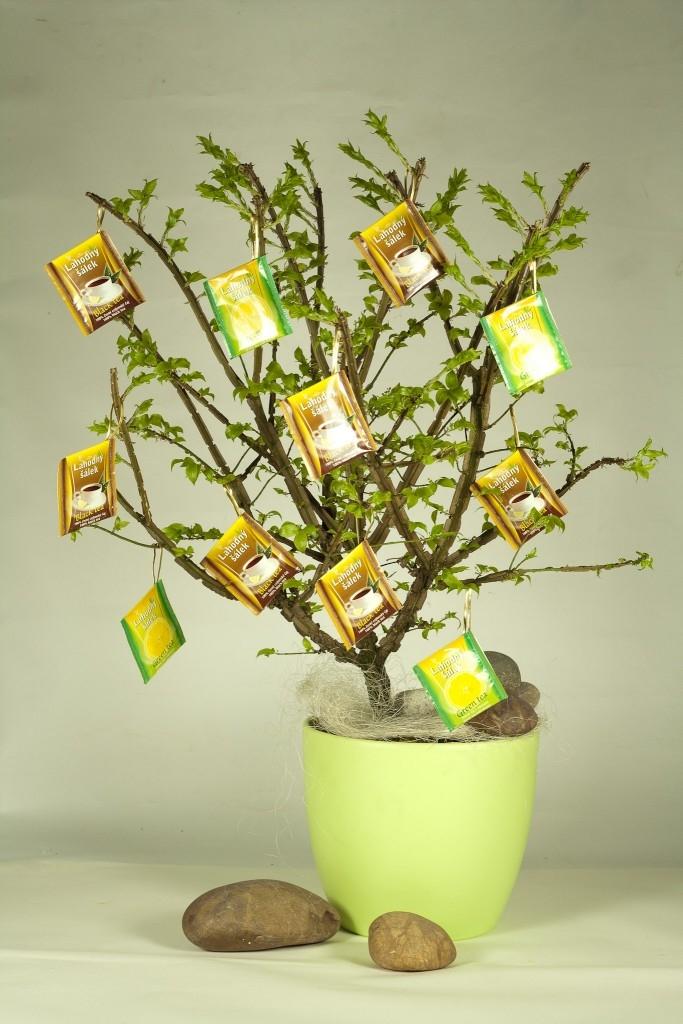 Čajový strom