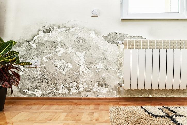 Plíseň v bytě způsobuje řadu problémů