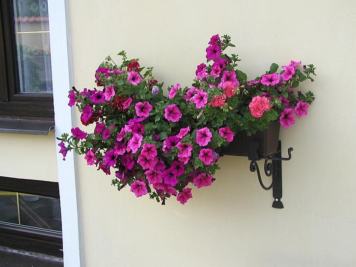 Nádoby a truhlíky na květiny