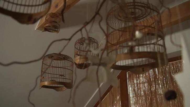 Zavěšené ptačí klece