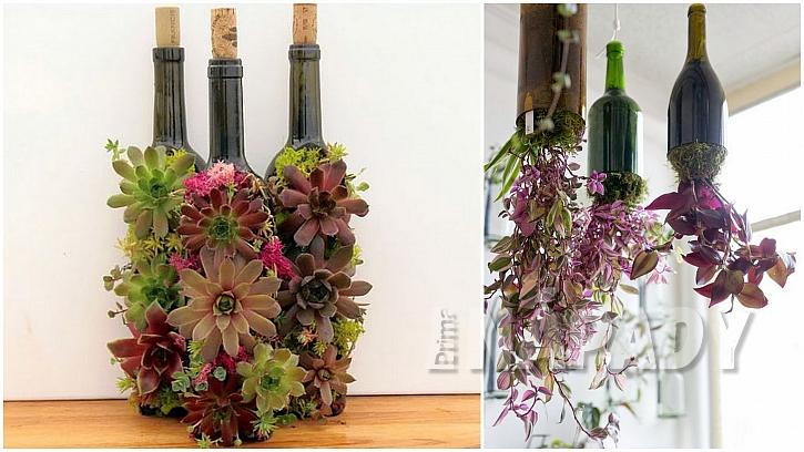 Květiny ve skle