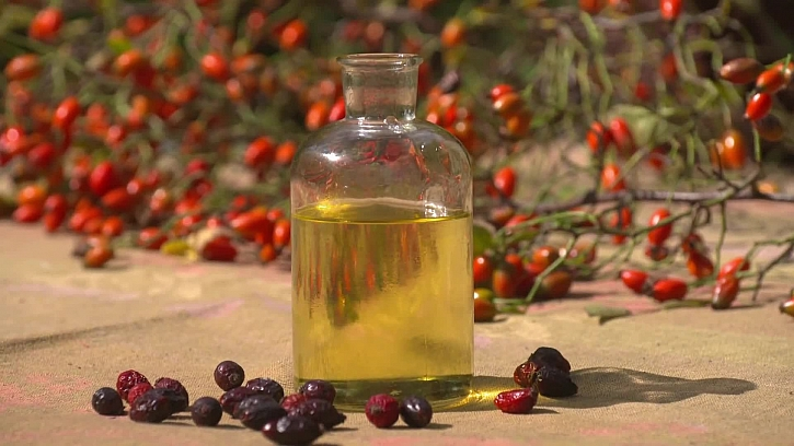Jak si vyrobit šípkový olej