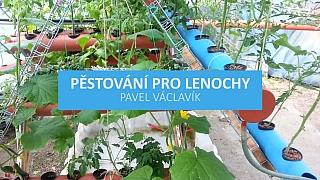 Jak pěstovat zeleninu bez námahy