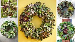 Věnce se sukulenty: Živá atrvanlivá dekorace na vstupní dveře či na zahradní stůl