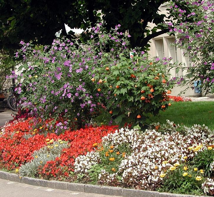 Květinové záhony