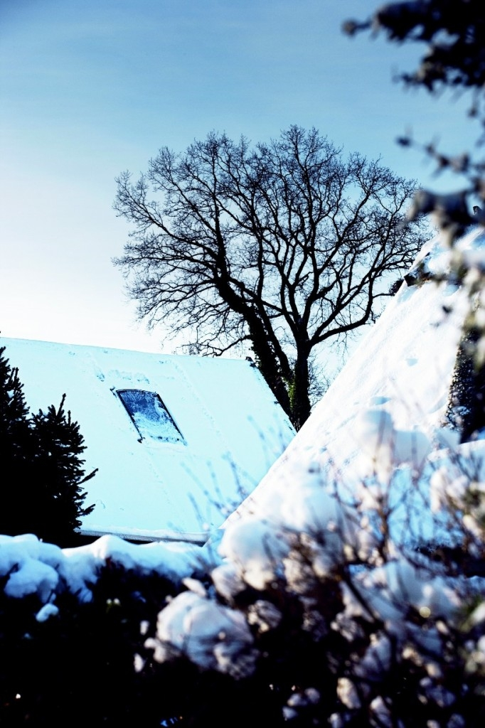 Ani v zimě nepodceňujte větrání