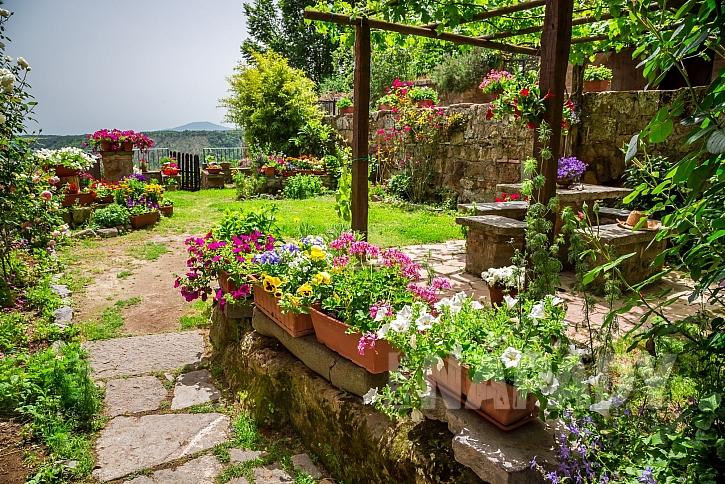 Provance zahrada