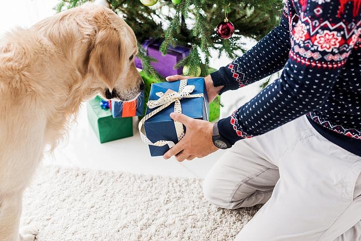 Předávání dárků