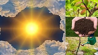 Předpověď počasí na poslední květnový víkend: Co dělat na zahradě