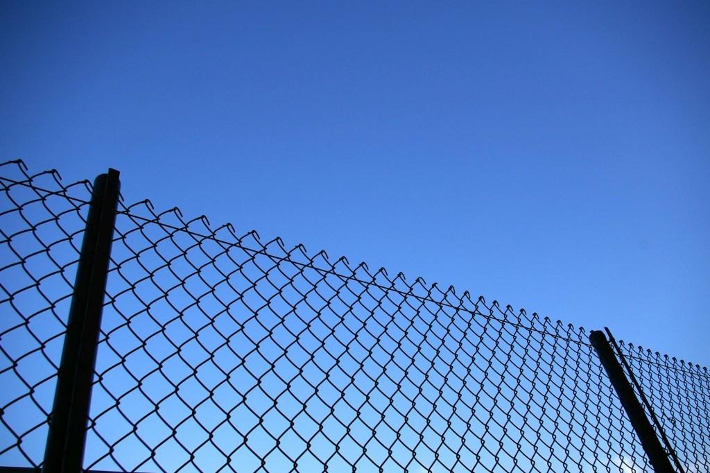 Drátěný plot je levná a snadná možnost, jak oplotit pozemek či zahradu