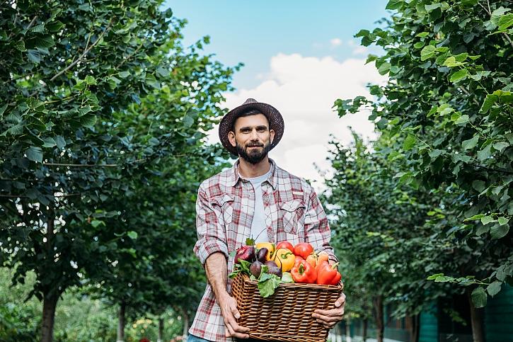 Zahradník s úrodou zeleniny