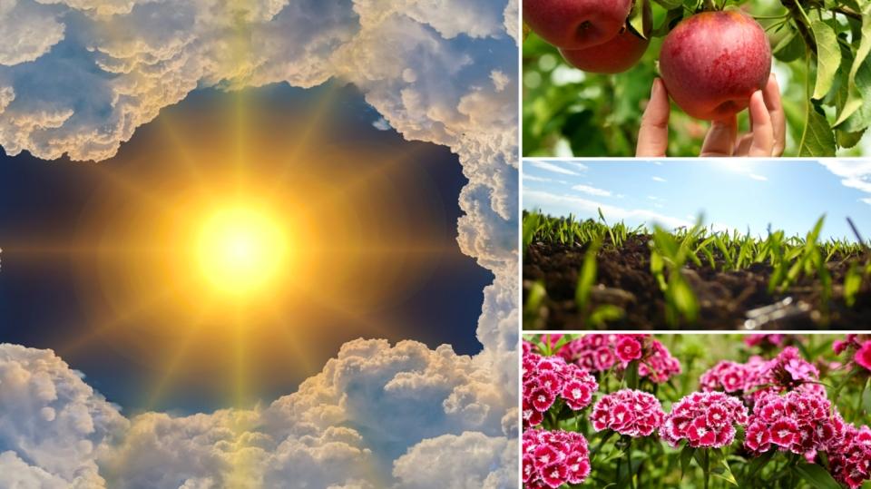 Předpověď počasí na první víkend vzáří: Co dělat na zahradě?
