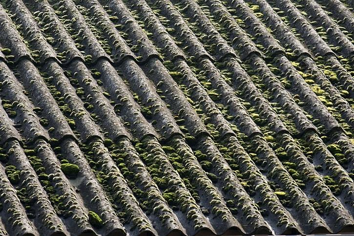 Mech na eternitové střeše nesundávejte, uvolnil by se nebezpečný azbest